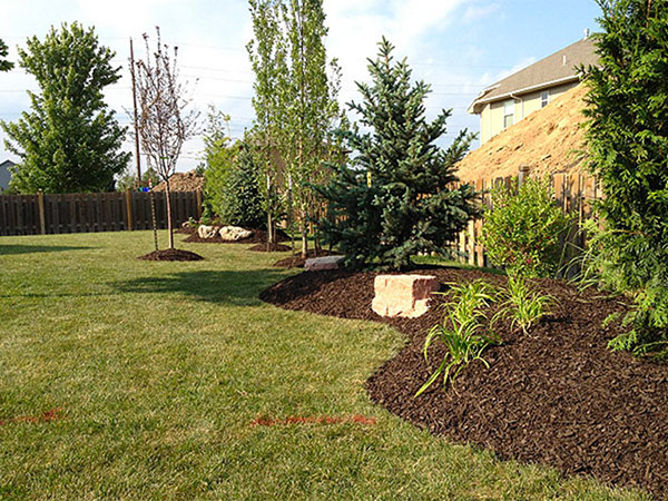 Residential Bed Maintenance Austin S Lawn Care And Landscaping