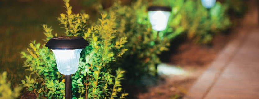 Landscape Lighting from Austin's Lawn Care