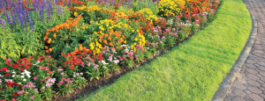 HOA Landscaping in Kansas City from Austin's Lawn Care