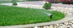 Lawn Irrigation Pros and Cons
